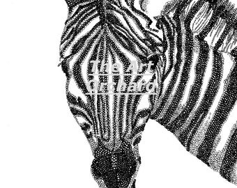 Print at home zebra adult colouring picture