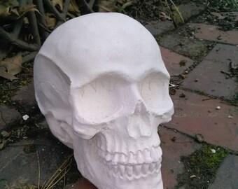 concrete skull ornament