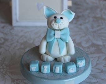 Fondant Rabbit with Name Blocks Edible Cake topper Decoration