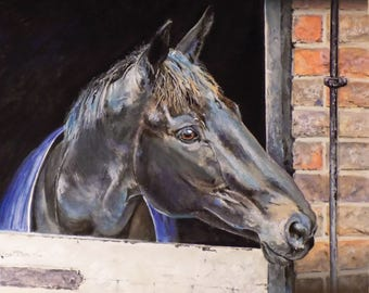 Racehorse Many Clouds Art Print