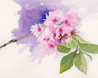 "Original watercolor painting ""Cherry Blossom Study #2"" floral spring flowers pink"