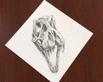 Tyrannosaur Skull no. 5