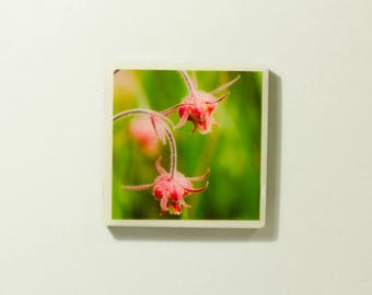 Wildflower Ceramic Tile Magnets