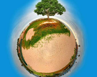 Lil' Planet Artwork - 2013 Santa Barbara Earth Day