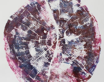 Spruce 16 (unframed)
