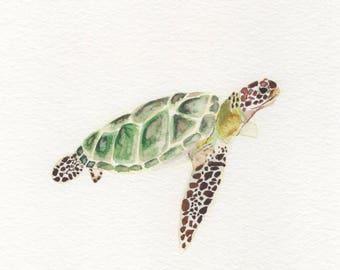 Sea Turtle Watercolor Painting Digital Download