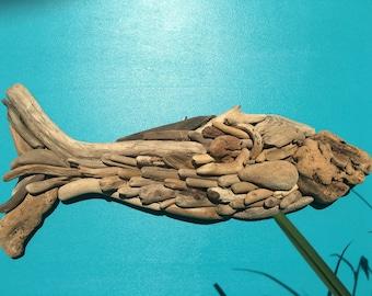 Driftwood fish Poisson de bois flottant-- Driftwoodfish