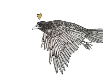 flying crow has something on his mind ORIGINAL artwork ink drawing on paper 9 x 12 with gold heart accent