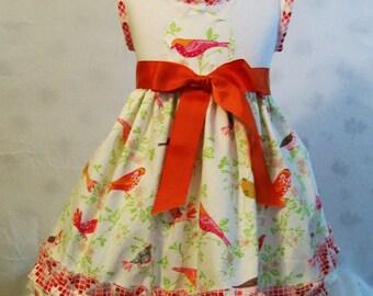 Girls Dress, Knit Top Dress, Girls Dresses, Red Birds Dress, Baby Dress, Toddler Dress, Big Girls Dresses, Girls Clothing, USA Made, #164