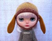 Dog Hat - New Series