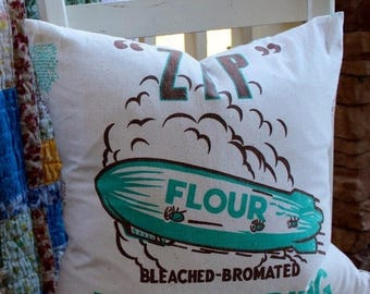 BIG SALE - ZIP Flour Sack Pillow Cover - Turquoise and Brown - 18""