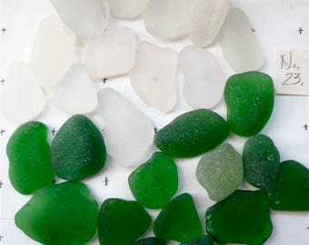 Clear White  Beach Glass  Puerto Rico Shores  Clears and Greens Tumbled Shards