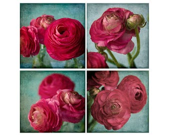 Red Ranunculus Print Set, Floral Wall Art, Flower Photographs,  Floral Art Print, Red Teal Home Decor
