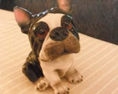 Boston Terrier Coin Bank - Piggy Bank