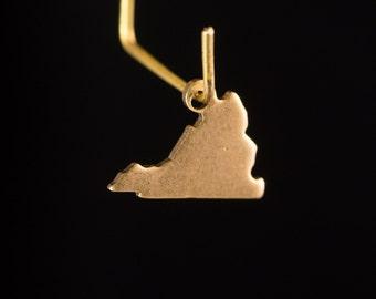 Raw Brass Tiny Virginia Blank State Charm Drops (2) chr229N