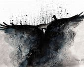 Birt art print, raven rising from dust 8x12, 16x12, A4, A3, select size, canvas poster
