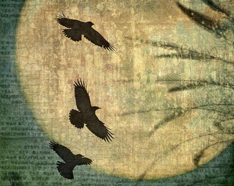 Crow Moon - Signed Fine Art Photographic Collage by June Hunter Crow Art