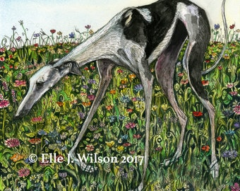 Galgo Greyhound  DOG -  ORIGINAL PAINTING