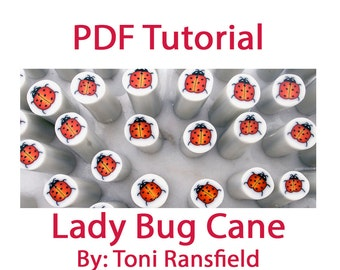 Lady Bug Cane Tutorial
