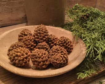 Blackened Beeswax Mini Pine Cones #424