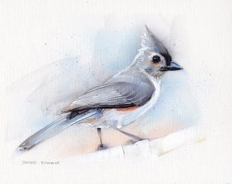 Tufted Titmouse Acrylic Painting Original Art