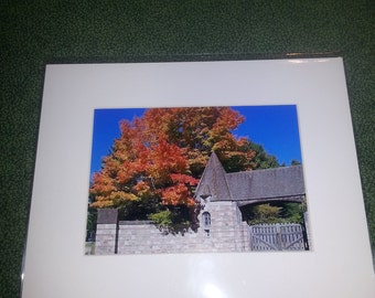 "Fall Colors at the Carriage House in Northeast Harbor Maine      8"" x 10"" matted print"