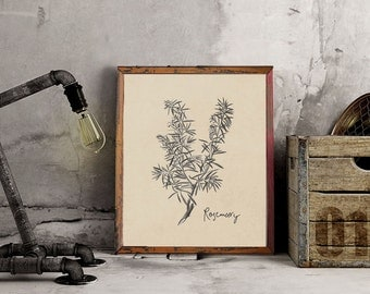 Instant Download Printable Art, Vintage Herbs, Three Background Choices + Dictionary Page, DIY Printable – Vintage Rosemary