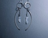 Big crystal and bone earrings