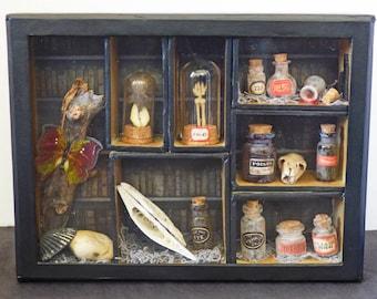 Miniature Curio Cabinet Shadow Box - Shadow Box Art - Gothic Miniatures - Miniature Apothocary Jars - Dark Home Decor