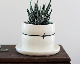 Mini Porcelain Planters with Black Linen