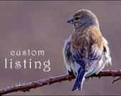 Custom Listing for Tamara Stanton