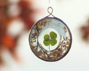 Genuine Four Leaf Clover Round Glass Ornament Unique Botanical Suncatcher