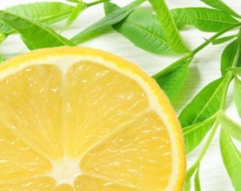 Lemon Verbena scented products Shower Gel, Whipped Body Butter, Lotion, Body Spray, Bath Soak, Shampoo or Conditioner