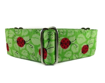 Ladybug Martingale Collar, 2 Inch Martingale Collar, Greyhound Martingale, Lime Green Dog Collar, Preppy, Martingale Dog Collar