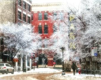 Winter Kissed