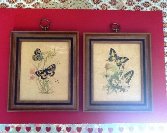 Two Vintage Framed Butterfly Pictures