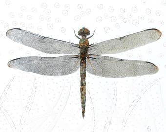 Silver and Gold leaf Dragonfly, Painting of a Dragonfly, Original Painting, Gold Leaf and Silver Leaf Home Decor
