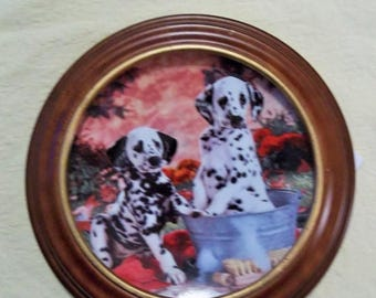 ETSYONSALE You Missed a Spot Hamilton Collection plate FRAMED COA Dalmations Dogs Dalmations