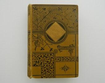 Jane Eyre by Charlotte Bronte. Rare Antique Book circa 1885. Classic Literature. Victorian Library.