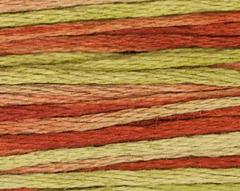 TOBACCO ROAD 4155 : Weeks Dye Works WDW hand-dyed embroidery floss cross stitch thread at thecottageneedle.com