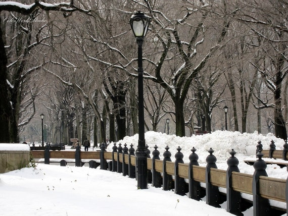 New York Photography, New York Print, Central Park Photo, Winter Print, Snow in Central Park, Nature, Landscape, Manhattan, NY Decor, FPOE