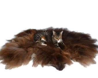 Cruelty Free - Wool Cat Bed - Dog Bed -  Felted Fleece Rug Pet Bed - Navajo Churro  - Supporting Small US Farms - Ready to Ship