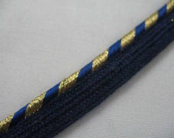 Blue and Gold  Pillow Trim Piping Cord Gimp