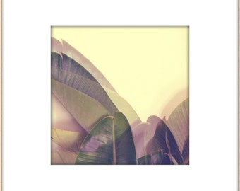 California Palms, Modern Botanical, Modern Wall Art, Abstract Palm Leaves, Lavender, Pantone, Minimal Home Decor, Greenery Jungalow Style