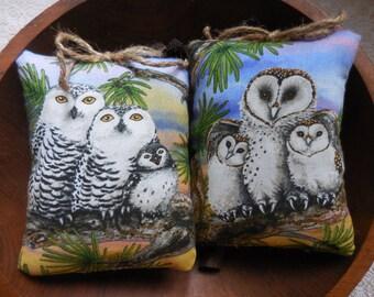Primitive Owl Pillow Tucks Barn Owls Snowy Owls Nature Ornies
