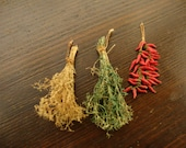 Miniature dried hot peppers. and Italian spices