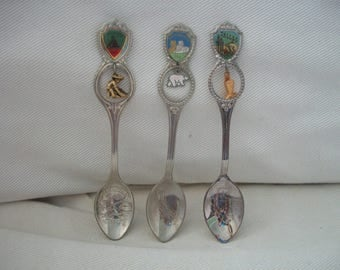 Vintage State Decorative Collectible Souvenir Spoon With Charm