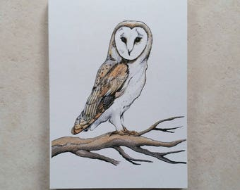 Barn Owl Mini Notebook - Notepad - With Tear Out Pages - Compact Handbag Size Jotter - 100% Recycled - Eco