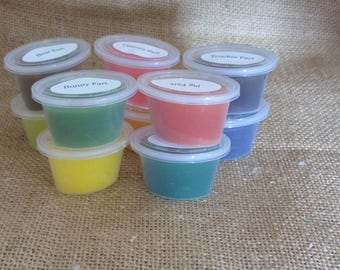 Fart Sampler wax melts