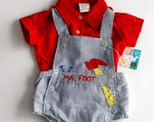 Mr. Fix-It Baby Boy Overalls, red button up shirt, vintage baby boy outfit.